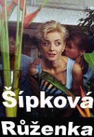 TV program: Šípková Růženka