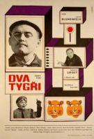 TV program: Dva tygři