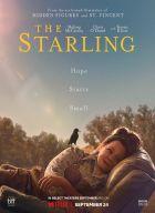 Špaček (The Starling)