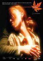 Oranžová láska (orAngeLove)