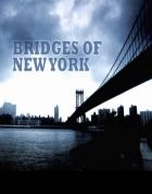 Newyorské mosty (Bridges of New York City)