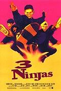 Tři stateční (3 Ninjas)