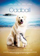 TV program: Oddball a tučňáci (Oddball)