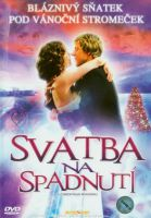 TV program: Svatba na spadnutí (A Christmas Wedding)