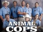 TV program: Veterinární policie Houston (Animal Cops: Houston)