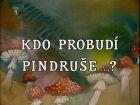 TV program: Kdo probudí Pindruše?