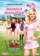 TV program: Domácí mazlíček (The House Bunny)