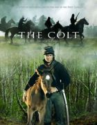 TV program: Hříbě (The Colt)