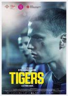 Tigers (Tigrar)