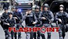 TV program: Flashpoint