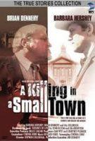 TV program: Vražda na malém městě (A Killing in a Small Town)