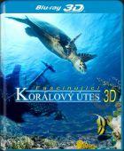 Korálový útes 3D (Coral Reef  3D)