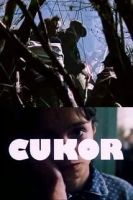 TV program: Cukor