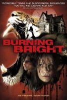 TV program: Bengálský tygr (Burning Bright)