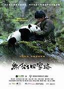 TV program: Dobrodružství s pandou (Xiong mao hui jia lu)