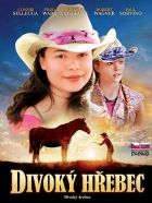 TV program: Divoký hřebec (The Wild Stallion)