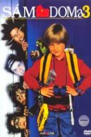 TV program: Sám doma 3 (Home Alone 3)