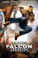 TV program: Návrat Falcona (Falcon Rising)