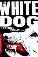 TV program: Bílý pes (White Dog)