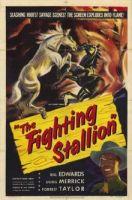The Fighting Stallion