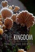 Království - Jak houby stvořily náš svět (The Kingdom - How Fungi Made Our World)