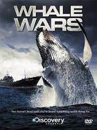 Boj za záchranu velryb (Whale Wars)