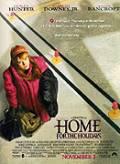 TV program: Domů na svátky (Home for the Holidays)